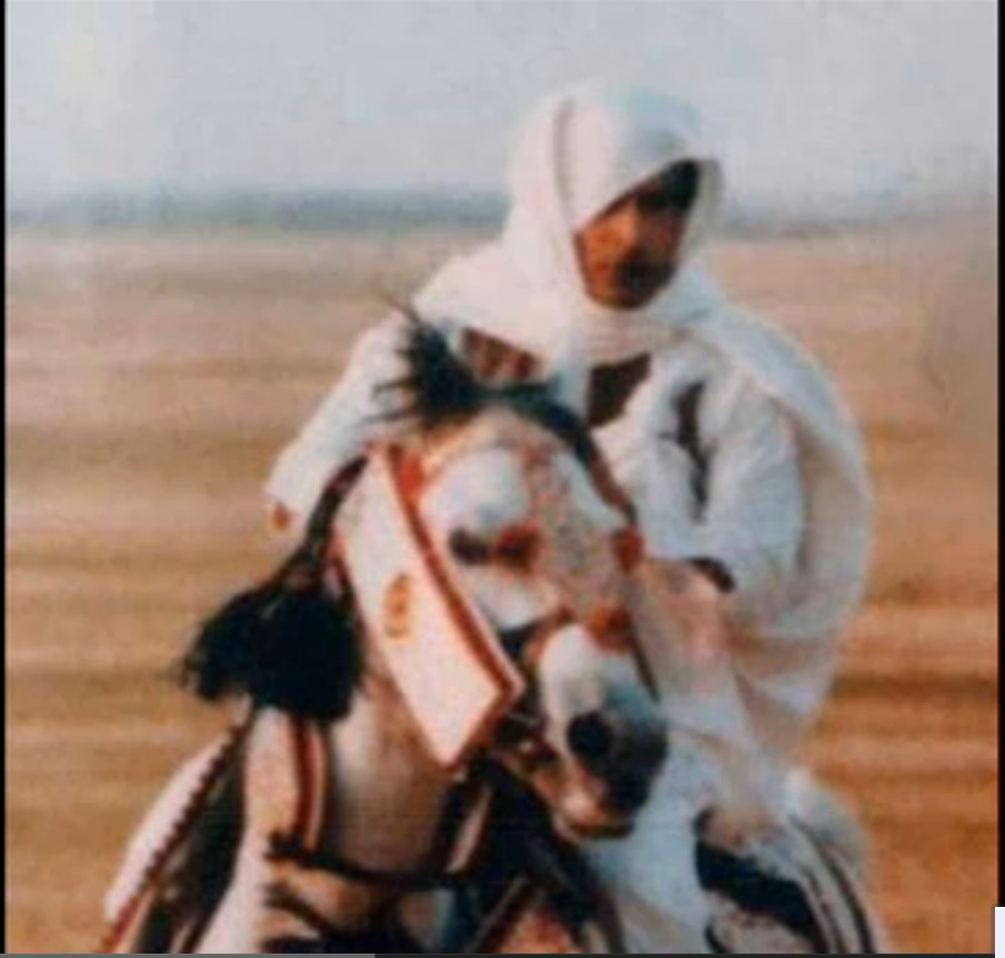 Mu and his white horse