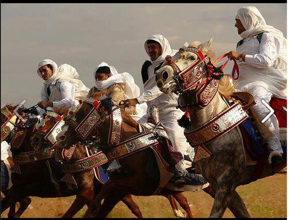 Riders of the BANI WALID