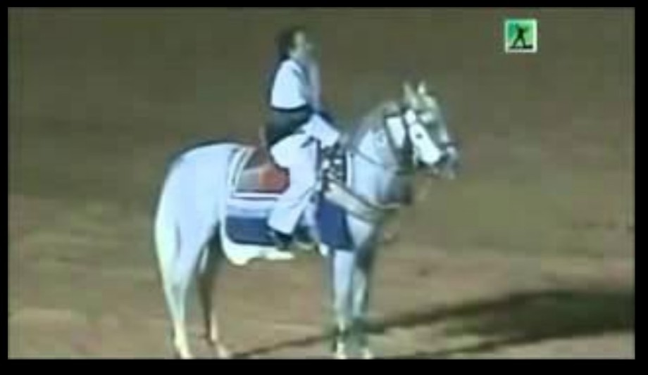 Mu true horseman