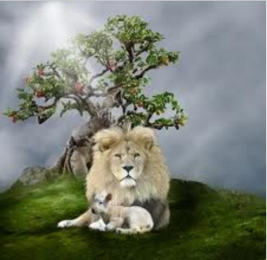 Lion of Libya w the Lamb