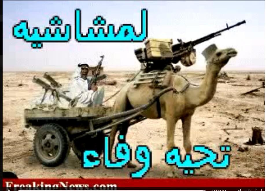 Camel guard