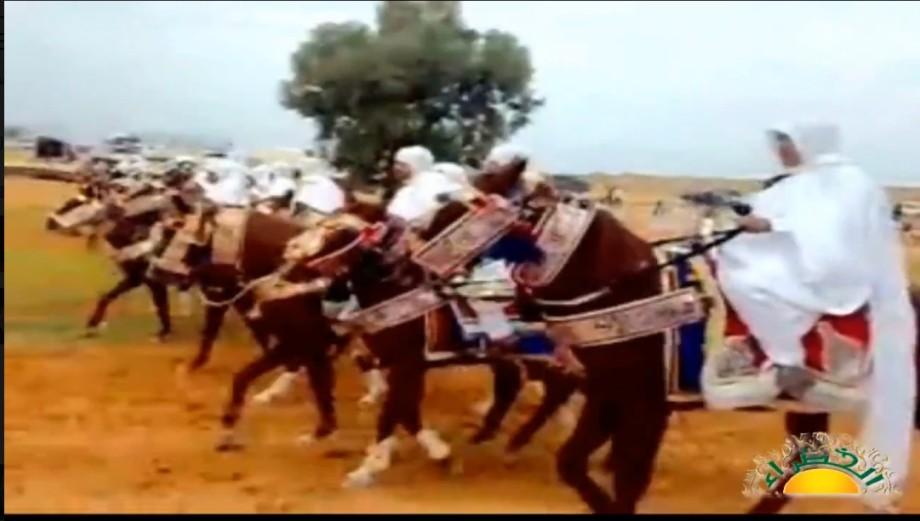 Free Riders of Libya