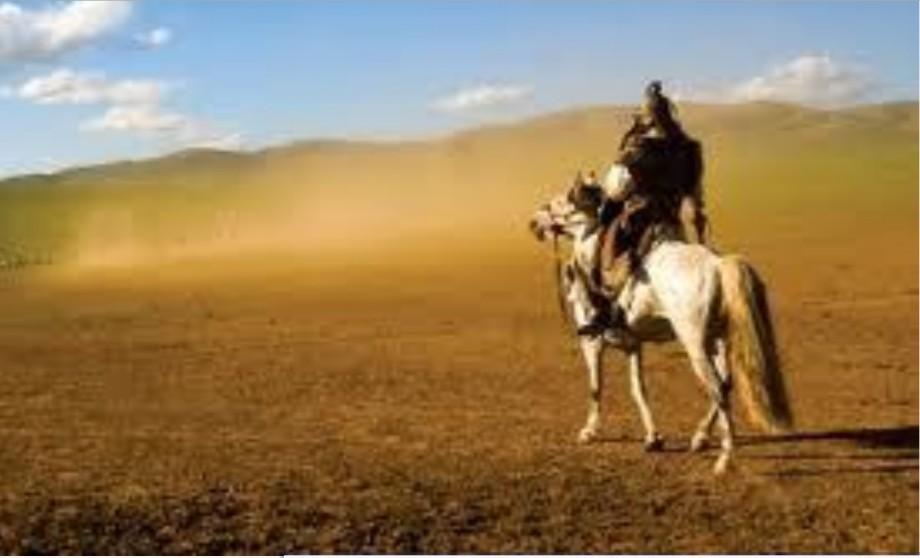 Rider in the wastelands