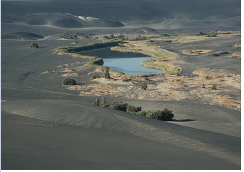 Kufra Oasis