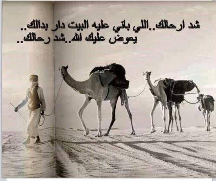 Good desert bedouin