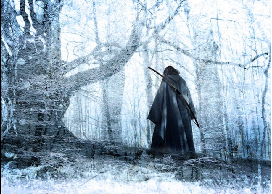 Lord Aragorn II
