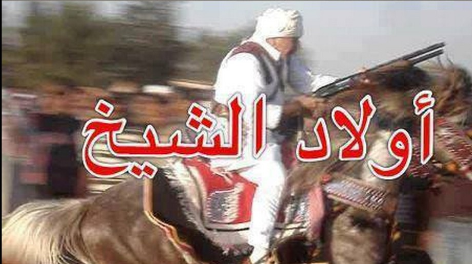 Zliten Knight rider