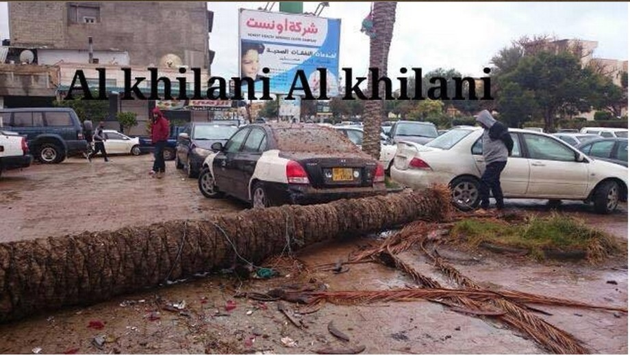 fall of a tree in al-ANDULAS near Bank
