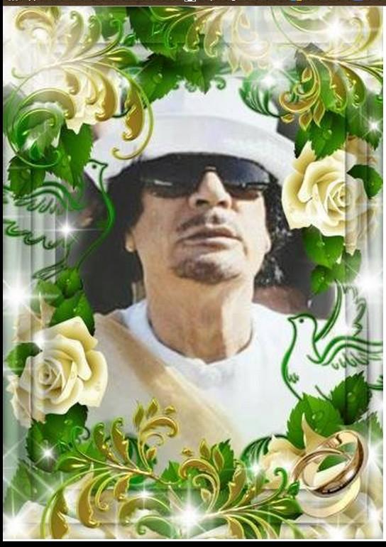 Mu w white Roses