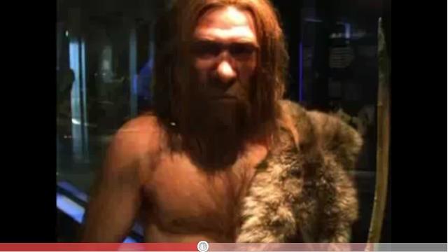 museum Neanderthal