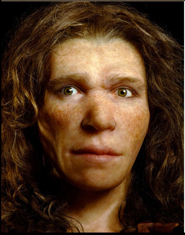 Neanderthal woman, 2