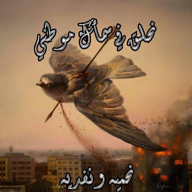 Aden, Yemen slaughter