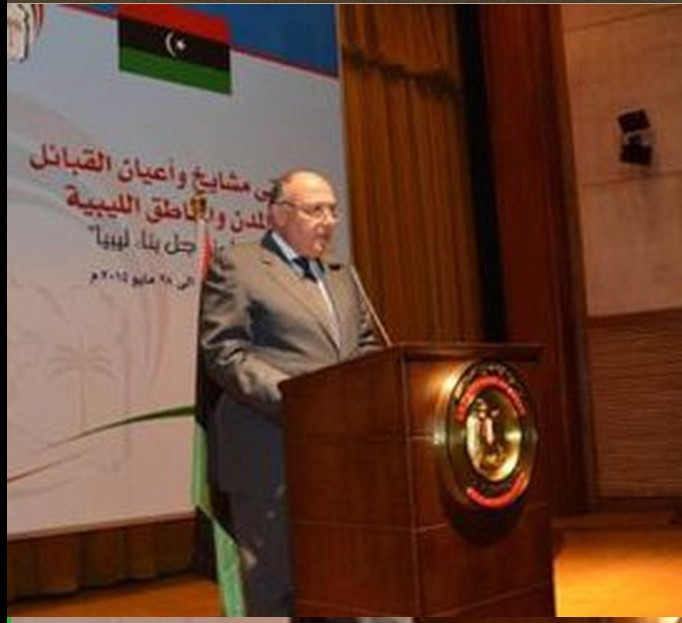 Shoukry-opens-tribal-conference
