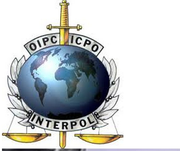 Interpol emblem