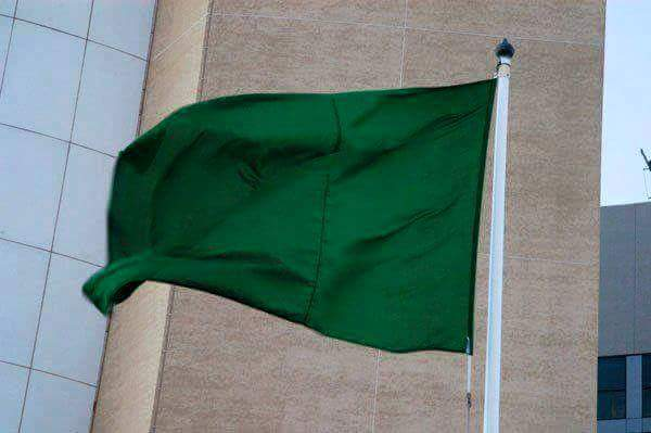 The One Green Flag