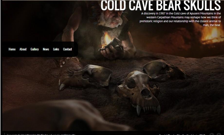 Cave bear skulls