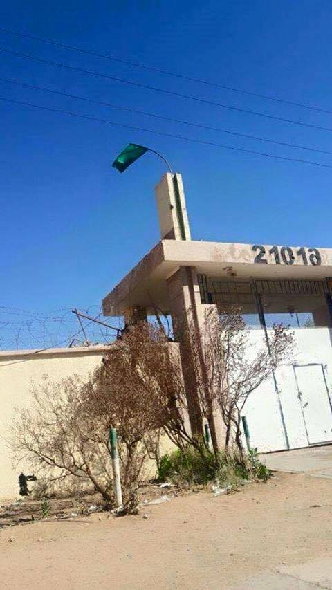 SABHA GREEN FLAG  FLIES FREE