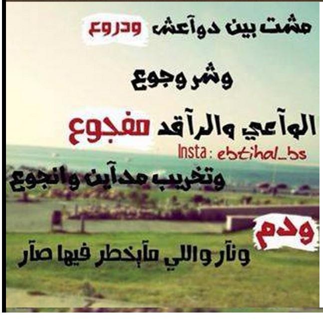 Imam ALI follow