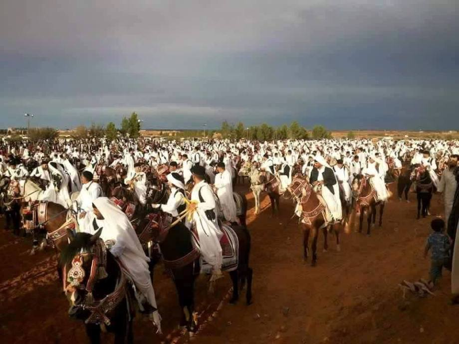 Zintani Equestrian Festival of Arabian horses, 2015