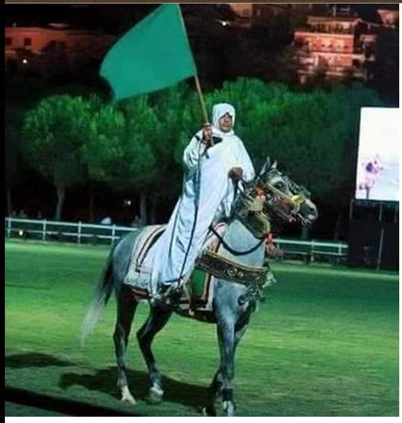 GREEN LIBYAN NAFUSA HORSEMAN